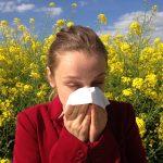 Allergische Rhinitis, Allergischer Schnupfen