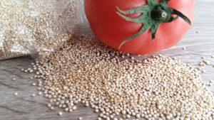 Quinoa Allergie, Saponin Unverträglichkeit Tomaten und Quinoa