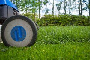 Gartenarbeit, Rasenmähen, Allergie