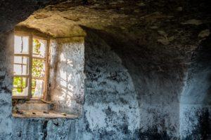 Schimmelpilze im feuchtem Keller