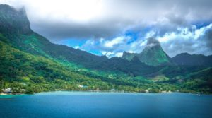 Insel Moorea Kava-Kava