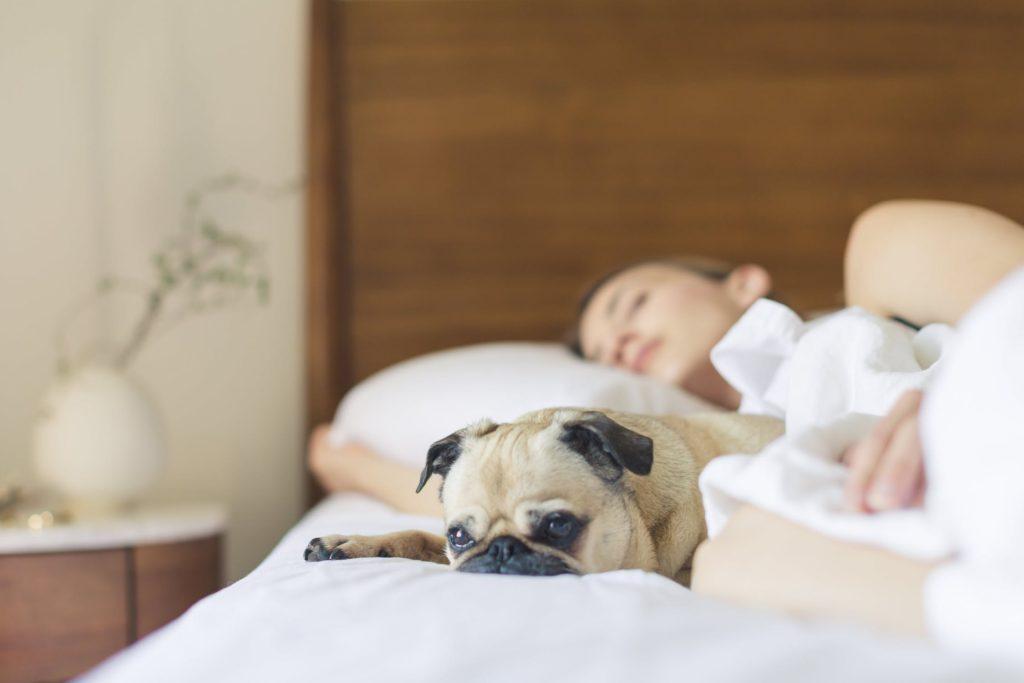 Schlafstörung durch Allergien