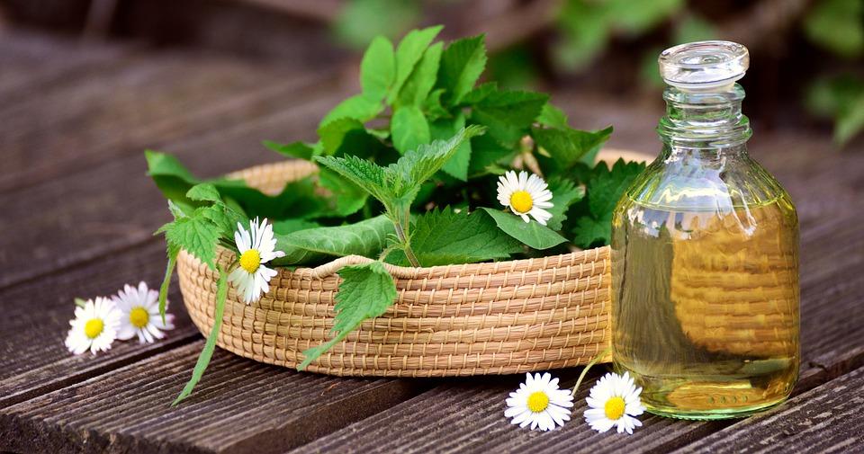 Heilpflanzen und Allergien