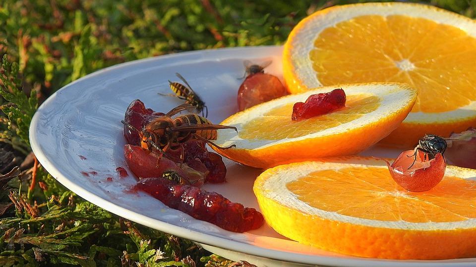 Was hilft Allergikern bei Wespenstichen